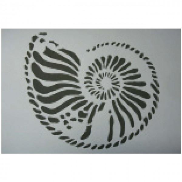 Schablone Ammonit 1